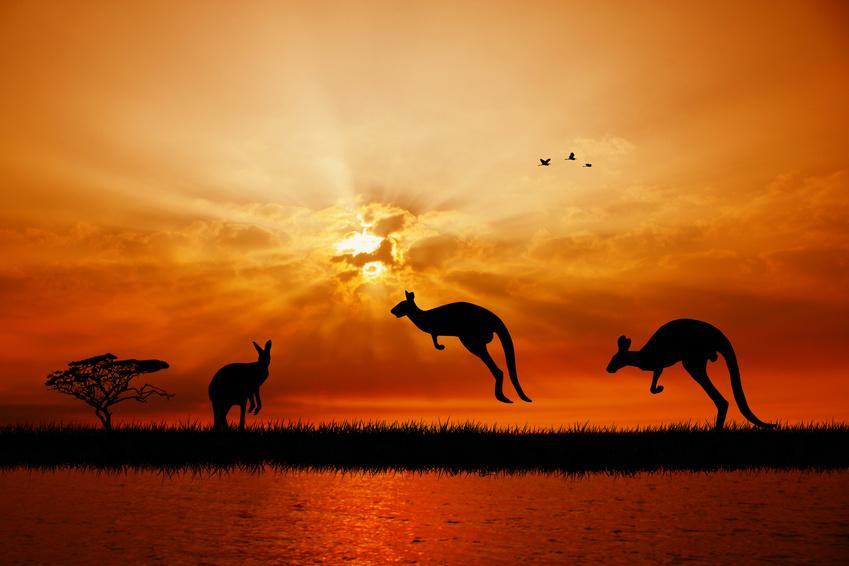 Oasis datant de l'Australie libre